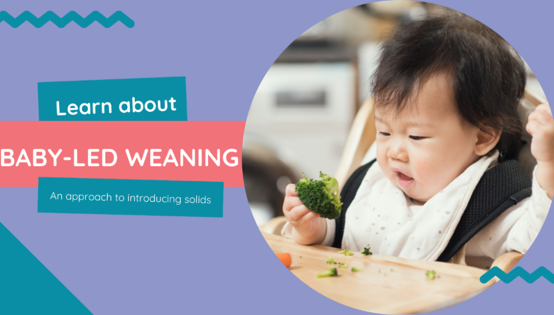 Baby-led weaning: an approach to introducing solids